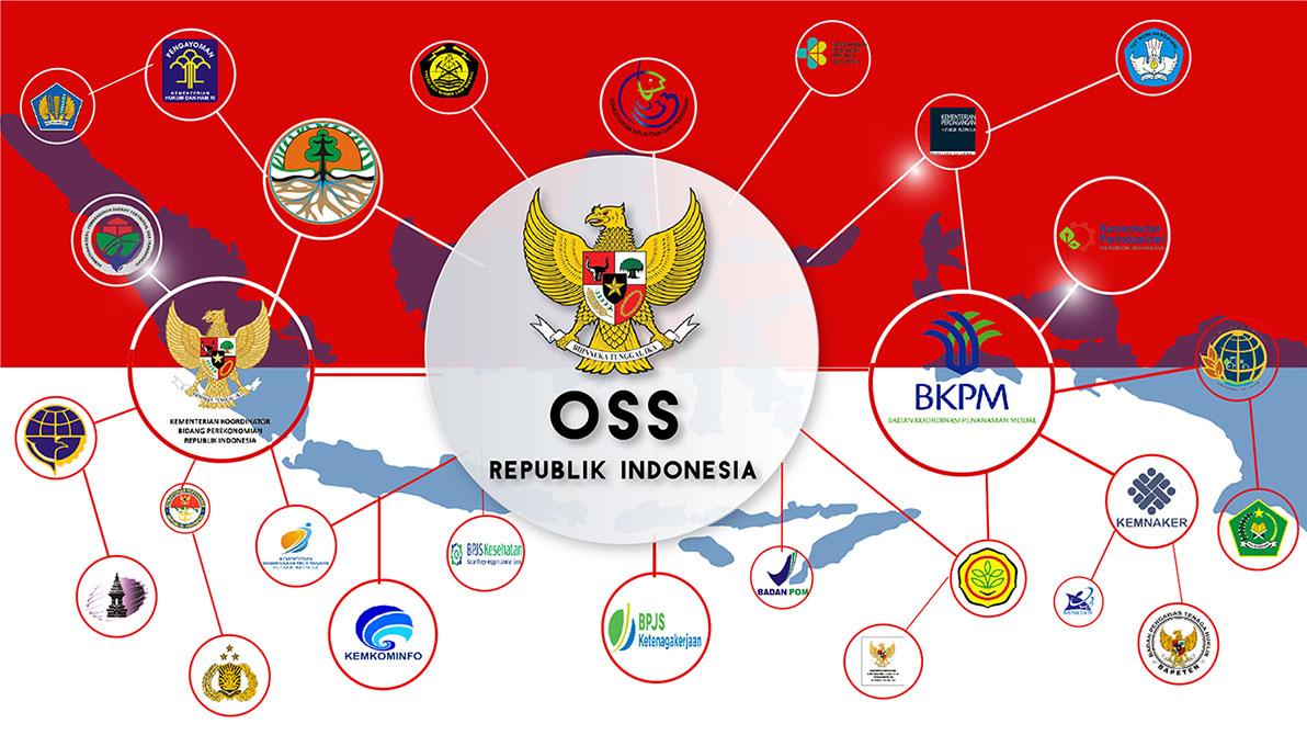 Setahun Pelaksanaan OSS